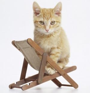 почему один человек сидит на стуле в цеху?